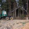 Machine-supported felling in the Komenda industrial zone